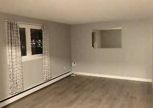 Newly Renovated Above Ground 2 Bedroom Apartment (Heat Included)