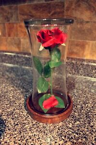 Mother's Day enchanted rose
