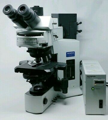 Olympus Microscope Bx51 With Dic And Fluorescence