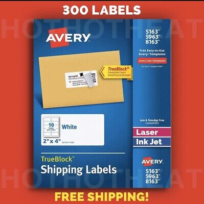 300 Avery 596351638163526318163 Address Mailing Shipping Labels 2 X 4