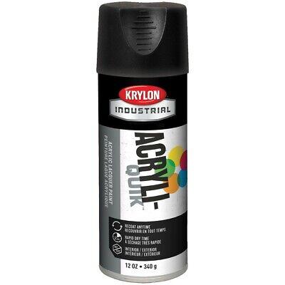 Krylon  Acryli-Quik Spray Paint, Ultra Flat Black, 16oz, CS/6 16 Ounce Spray Paint