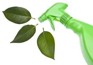 WELL ESTABLISHED GREEN-CLEANING BUSINESS - MORNINGTON PENINSULA Rosebud Mornington Peninsula Preview