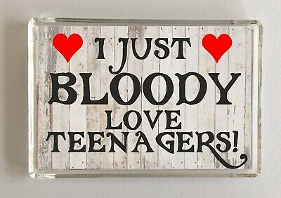 I Just Bloody Love Teenagers, Novelty Magnet, Present/Gift Christmas/Birthday ()