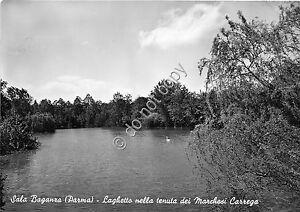 Cartolina-Postcard-Sala-Beganza-Laghetto-Marchesi-Correga-anni-039-60