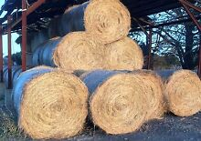 5ft Round Bales Lovely Banks Geelong City Preview