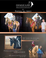 Horse Training/ Colt Starting/Private Riding Lessons