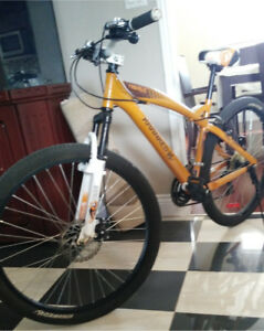Cool adult mountain bike for sale