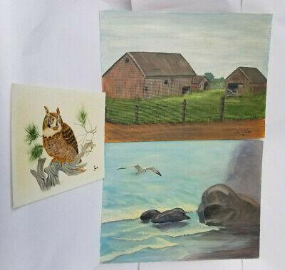 Three Vintage Oil On Canvas Paintings Alvis Americana Barn Seagull Owl