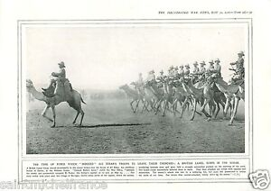 """British Camel Corps Sudan Africa / Indian Army Iraq Guns WWI 14 18 PLANCHE 1916 - France - PORT GRATUIT A PARTIR DE 4 OBJETS BUY 4 ITEMS AND WORLDWIDE SHIPPING IS FREE EXCEPT USA, CANADA, AMERICA ONLY TRACKING MAIL PLANCHE 1916 RECTO-VERSO ETAT VOIR PHOTO FORMAT 28 CM X 20 CM SIZE : 11.02"""" X 7.87 inch G.108.95 - France"""