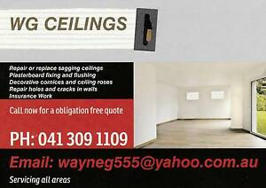 WG Ceilings Northam Northam Area Preview