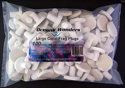 100 LARGE CURED REEF PLUGS FOR LIVE CORAL FRAG PROPAGATION for sps lps zoo zoa