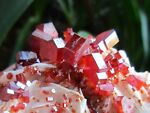 mister_minerals