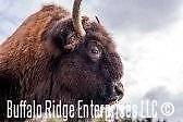 Buffalo Ridge Enterprises LLC