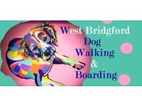 Professional & Affordable Dog Walker. Dog Boarding (West Bridgford) FULLY insured & Friendly