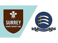 2 x Surrey v Middlesex T20 tickets for sale FACE VALUE