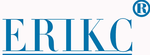 B-ERIKC-Common-Rail-Injector