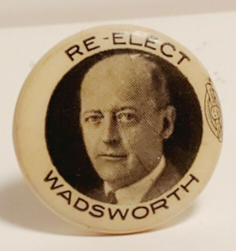 RE-ELECT JAMES WOLCOTT WADSWORTH JR NEW YORK CONGRECAMPAIGN BUTTON PIN 1930
