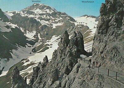 AK Davos. Felsenweg Strelapass Weissfluhjoch mit Weißfluh