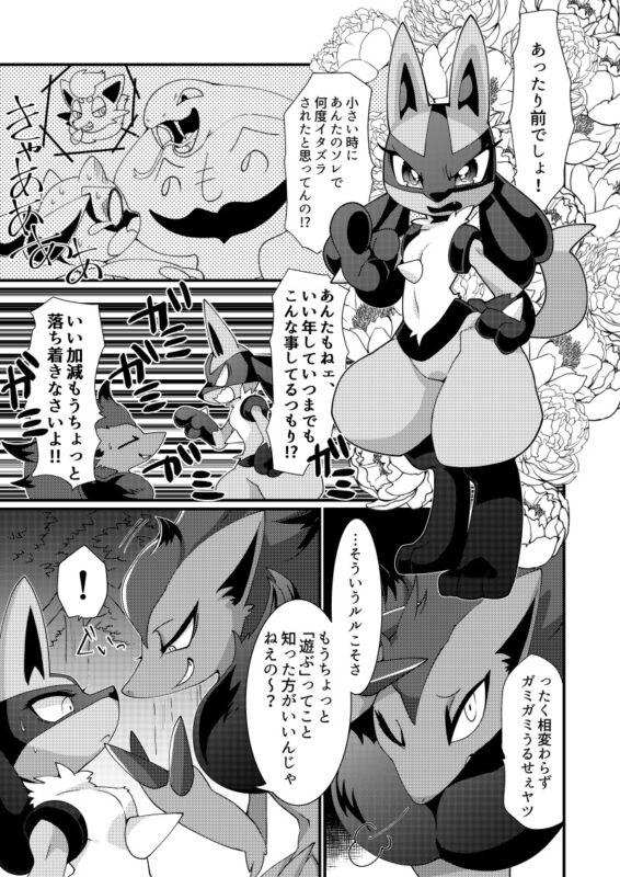 Doujinshi POKEMON Zoroark X Lucario (B5 24pages) SANGRIA furry kemono Aimo