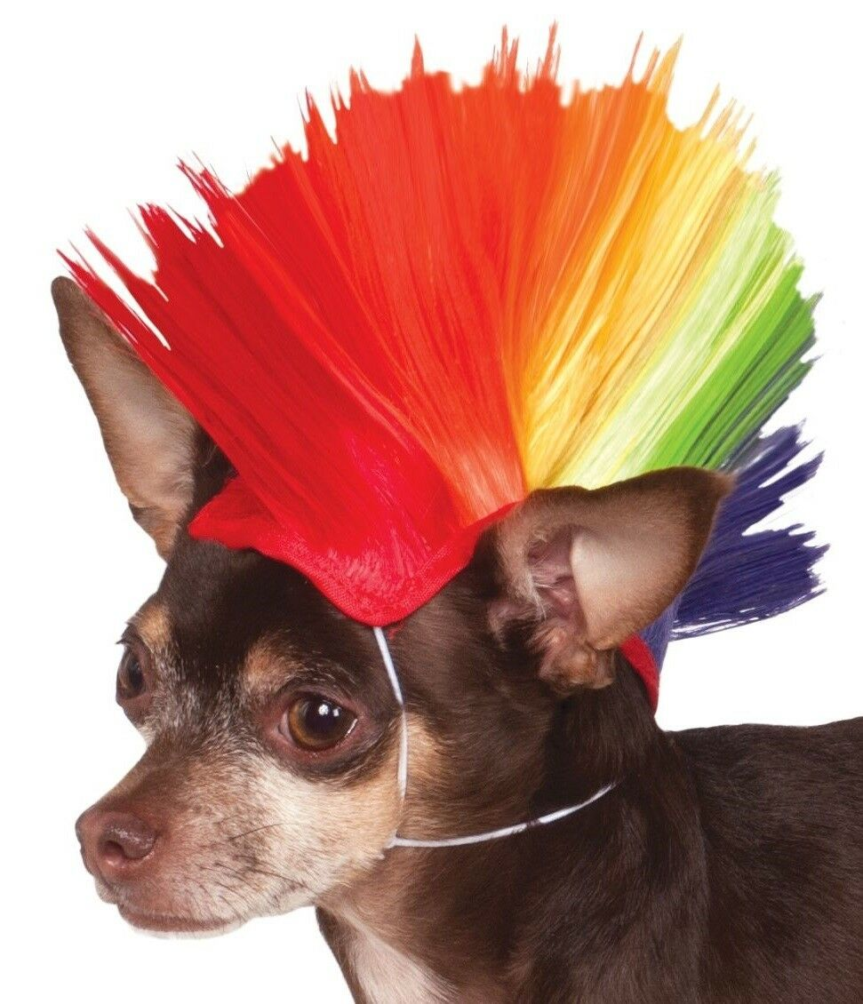 Animal Pet Dog Cat Rainbow Mohawk Wig Pride Carnival Fancy Dress Costume Outfit 2