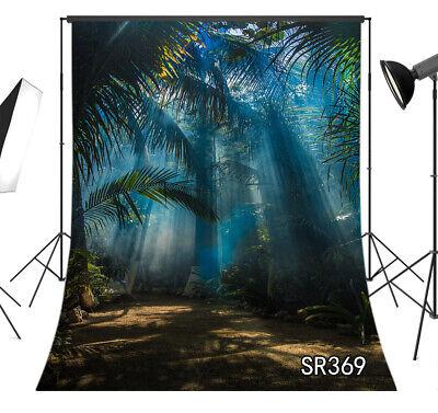 Jungle Trees Backdrop (Morning Sunlight Jungle Palm Trees Backdrop 5x7ft Vinyl Photography)