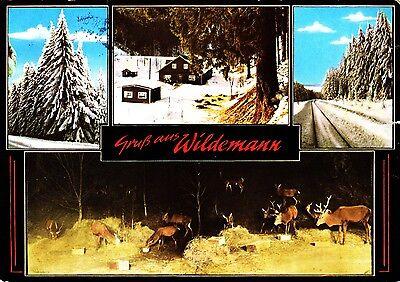 Wildemann ,Ansichtskarte, gelaufen