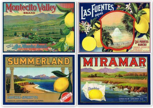 4 ORIGINAL LEMON CRATE LABELS VINTAGE 1920 & 1930S SANTA BARBARA MONTECITO