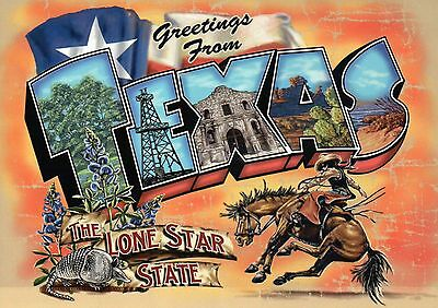 Greetings from Texas Flag Rodeo Horse The Alamo etc Modern Large Letter Postcard