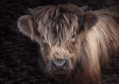 highland cow A3 Abstract print painting limited edition signed