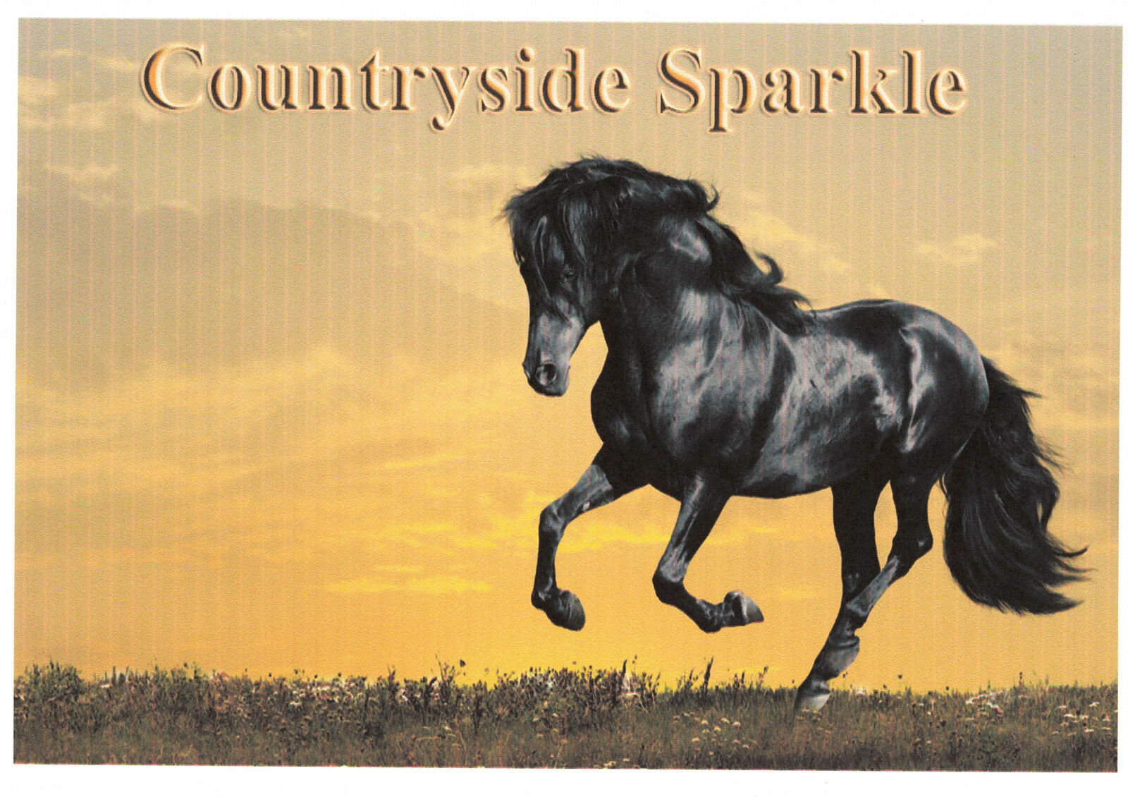 Countryside Sparkle