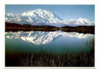 Mt McKinley Alaska Postcard Reflections on Wonder Lake Snow Unposted (Reflection Lake Alaska)