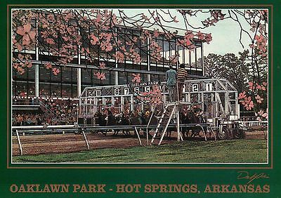 Oaklawn Park Hot Springs Arkansas, Horse Racing Racetrack Starting Gate Postcard