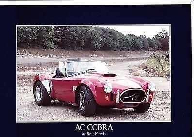AC Cobra Brochure  - 1993 - mint