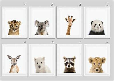 y Animal Safari Prints Animal Nursery Decor Nursery A4 (Baby Animal Prints)