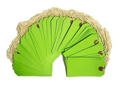 100 Green Tags 4 34 X 2 38 Size 5 Inventory Shipping Hang Tag With String