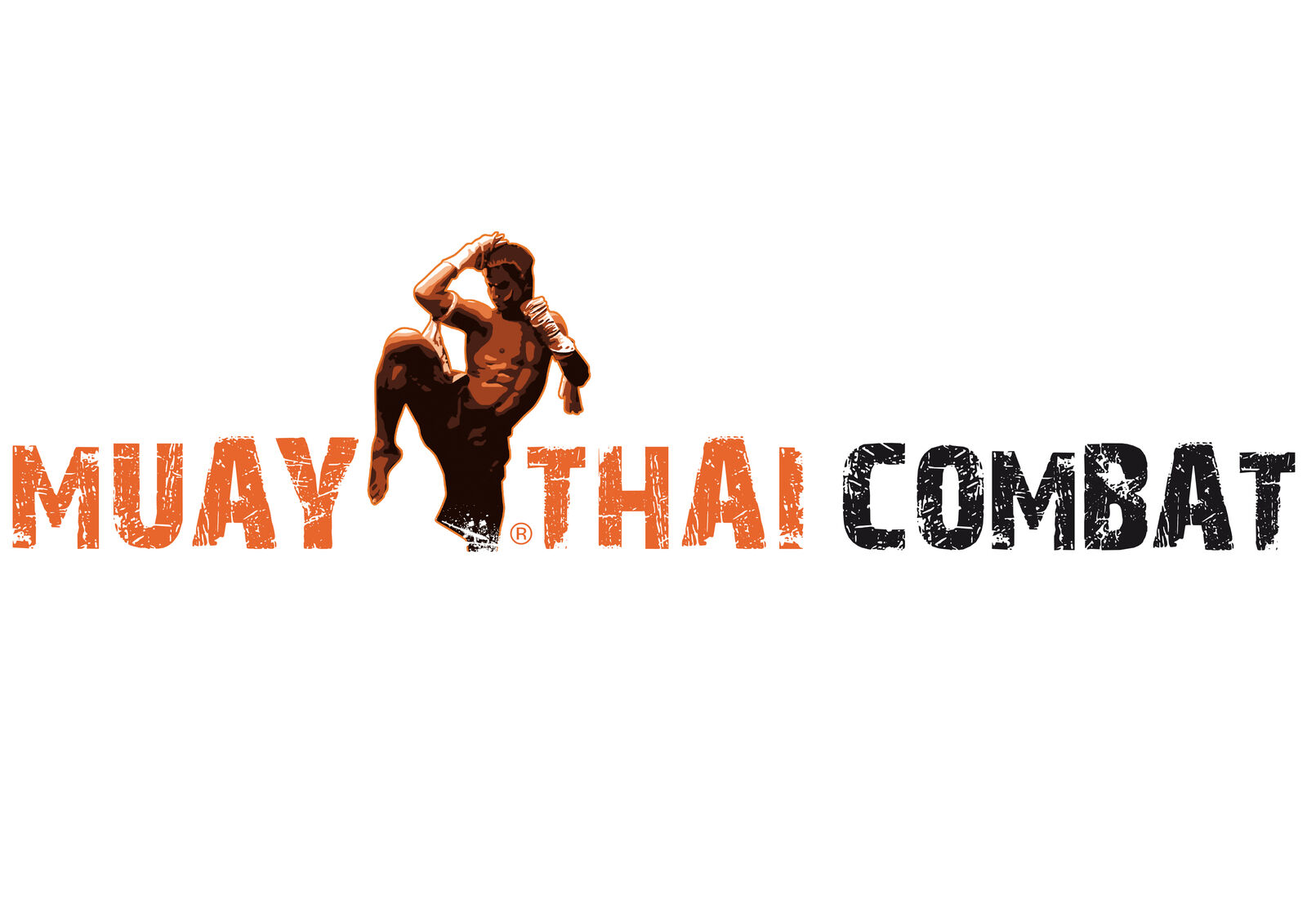 Muay Thai Combat Ebay