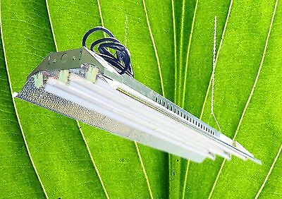 T5 HO Grow Light - 4 ft 3 Lamps - DL843 Fluorescent Hydroponic Fixture Bloom Veg