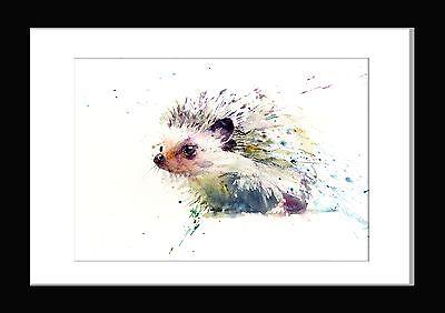 JEN BUCKLEY Original HEDGEHOG animal art wildlife Watercolour PAINTING 16 inch
