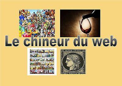 le-chineur-du-web
