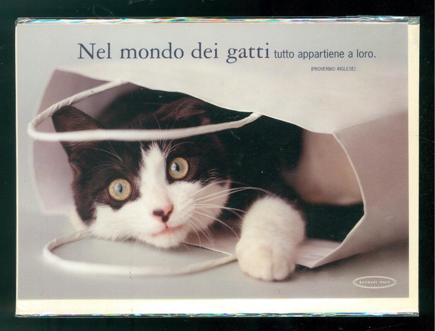 RACHAEL HALE BIGLIETTO AUGURI GIFT CARD MEDIO GATTO CAT 2004 CLAYTON