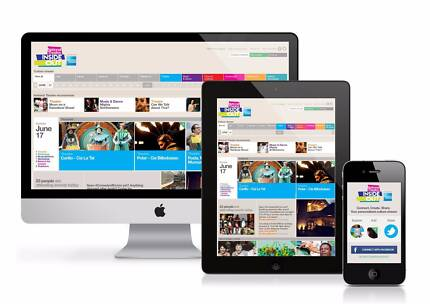Very Profitable One Stop Website Solutions Business For Sale