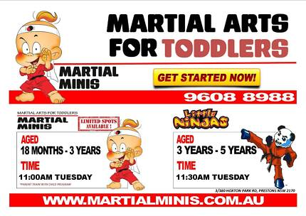 Martial Arts for Toddles Cartwright Liverpool Area Preview