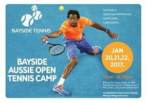 TENNIS CLINIC For Children and Adults - All standards Williamstown Hobsons Bay Area Preview