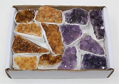 Wholesale Bulk Citrine & Amethyst Crystal Clusters: 10-18 Piece Lot