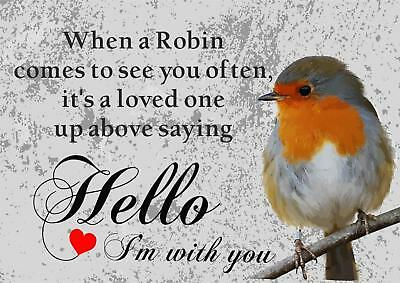Vintage Style Metal Wall Sign Plaque Robin Wildlife Bird Gift 15 x 20 cm