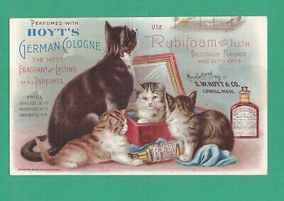 ANTIQUE TRADE CARD HOYT'S GERMAN COLOGNE & RUBIFOAM CAT CANARY CAGE KITTENS