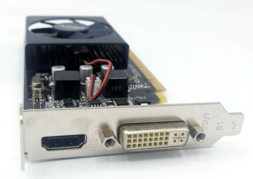 PNY Dell Nvidia GeForce GT 610 1GB DDR3 DVI HDMI Low Profile Video Card RH4GP