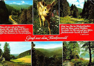 Gruß aus dem Frankenwald , Ansichtskarte , 1973 gelaufen