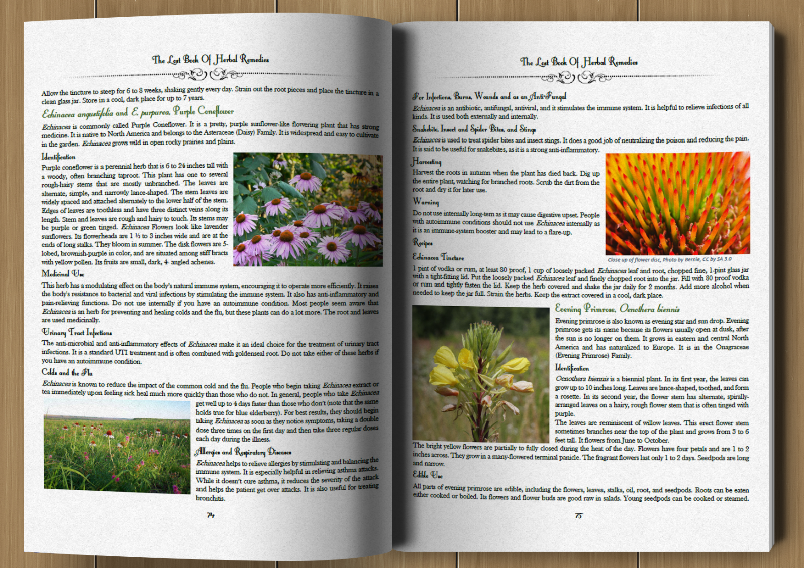 The Lost Book of Herbal Remedies (paperback with color pictures) 4