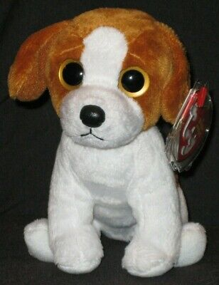 TY BANJO the DOG BEANIE BABY (BIG EYES) - MINT with MINT TAGS
